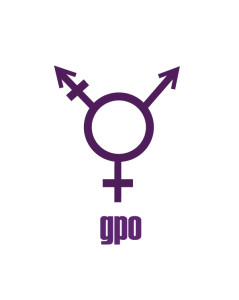 logo_gender politics online_gpo